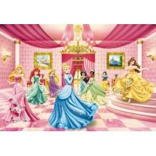Komar Disney poszter Hercegnők 8-476