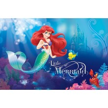 Consalnet Disney poszter 533 VE L