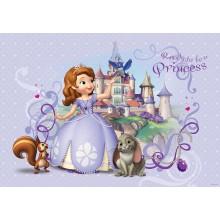 Consalnet Disney poszter 593 P8