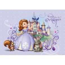 Consalnet Disney poszter 593 VE XL