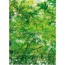 372 Bamboo