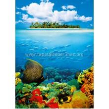 374 Treasure Island