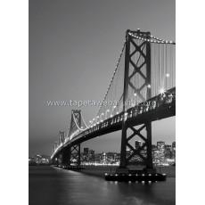 387 San Francisco Skyline