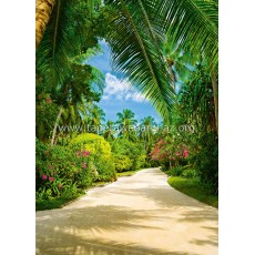 438 Tropical Pathway