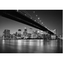 Manhattan Skyline 119