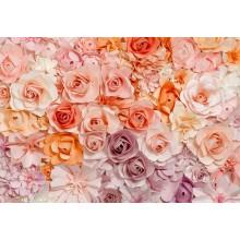 00147 Flowers