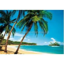 241 Ile Tropicale