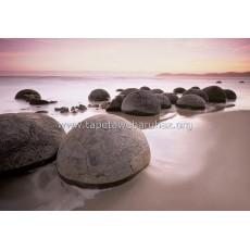 285 Moeraki Boulders At Oamaru