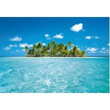 289 Maldive Dream